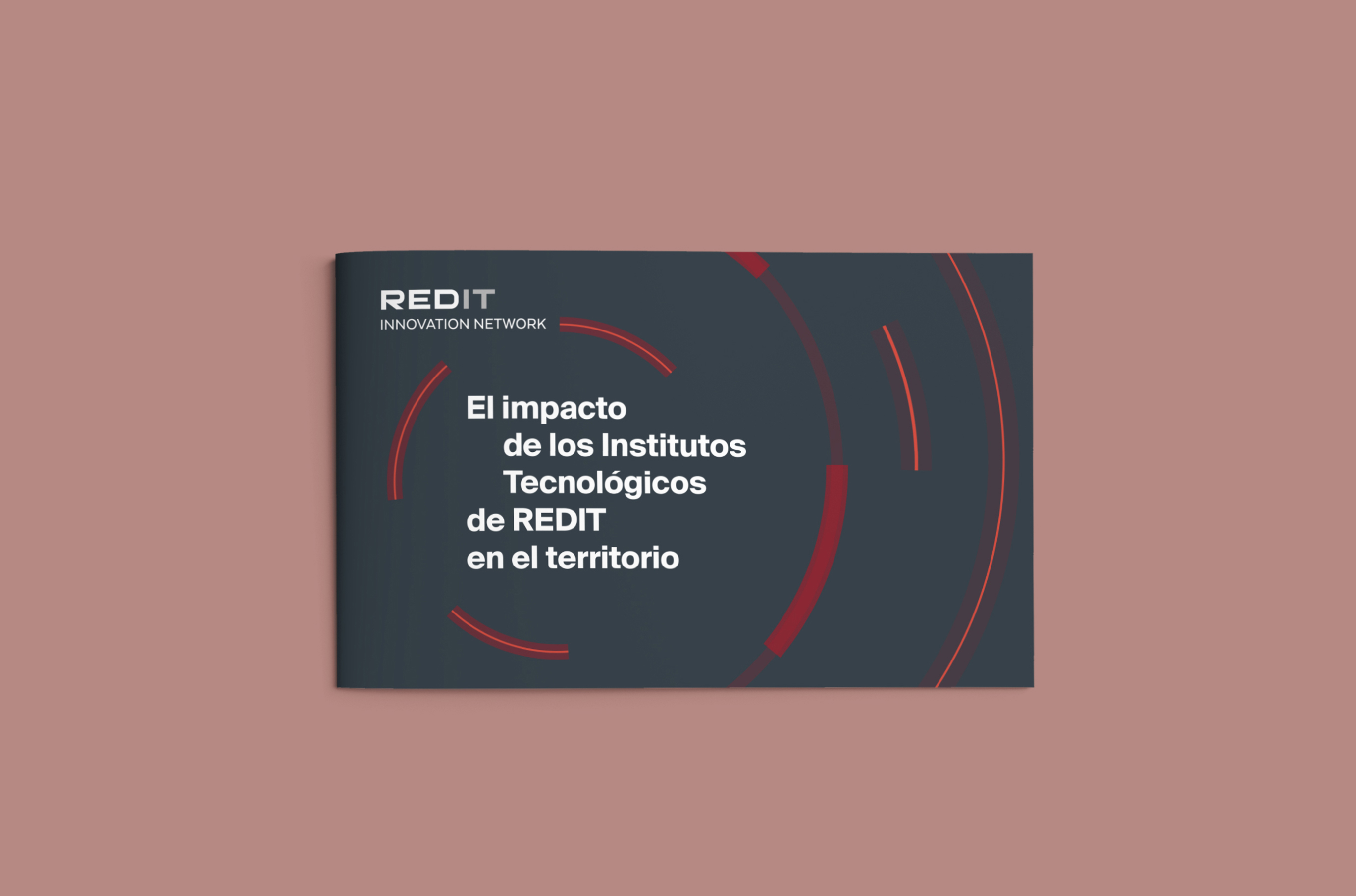 Informe REDIT